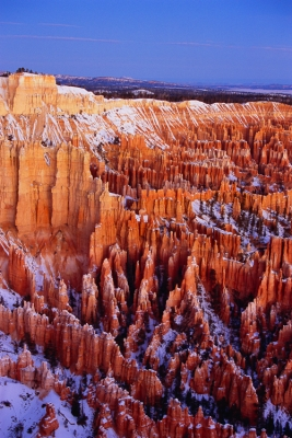 Sunrise At Bryce Point, Bryce Canyon Ntl Park, Ut