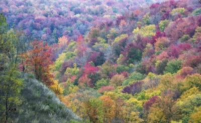 Fall Foliage Pa Mountains Route 6