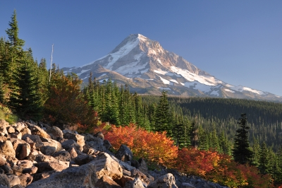 Mt. Hood In Autumn