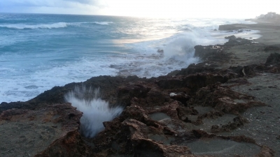 Pausing The Blowhole