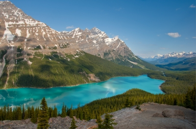 Peyto Morning