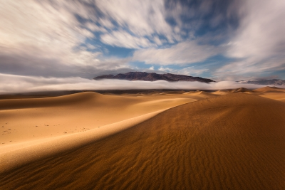 The Prestige (low Fog Over Mesquite Dunes)