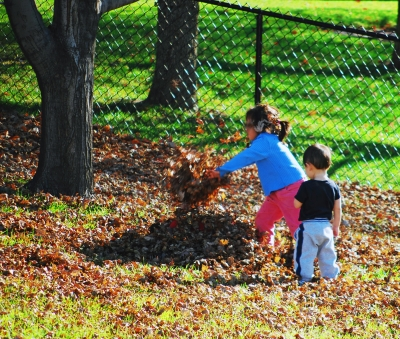 Kids N Leaves