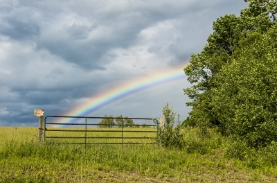 Rainbow And Fence