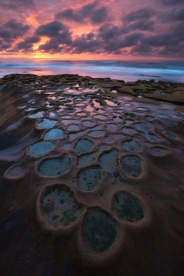 A Winter Moment (hospitals Reef, La Jolla Potholes)