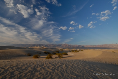 Mesquite Dunes, Late Afternoon, Death Valley National Park