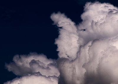 Taking The Oath Of Office, A Gorilla In The Clouds