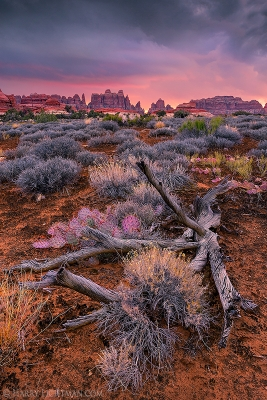 Chesler Park, Canyonlands