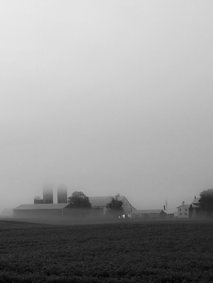 Morning Fog Over Farmland