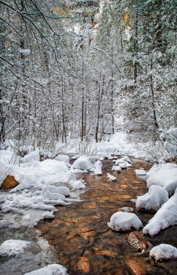 Amber Creek In Winter