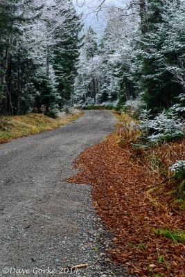 Jefferson Notch Road, First Snow