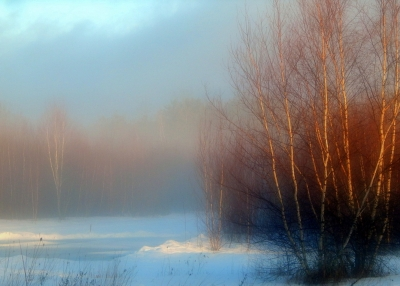 Mist Of The Morning