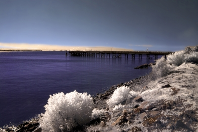 Southport Pier In Infrared