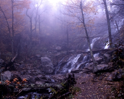 Mystical Passage At Dark Hollow Falls