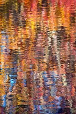 Pickering Creek Abstract