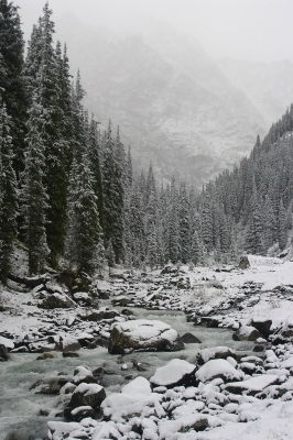 New Snow In The Tien Shan