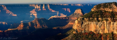 Fall Panorama From The North Rim