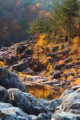 Morning Light At Johnson Shut-ins Iii
