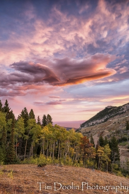 Fall In The Bighorns