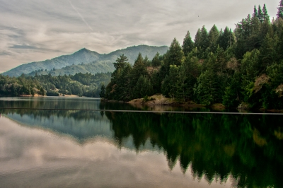 Lake Lagunita In The Fall