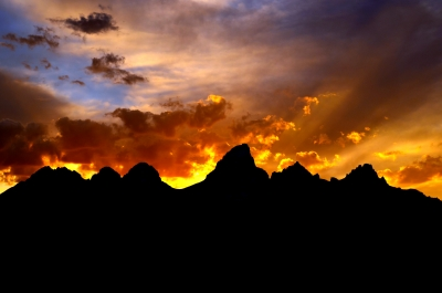 Silhouetted Tetons