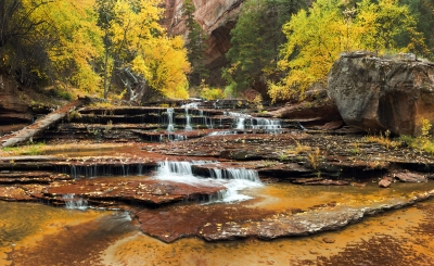 Fall Colors At The Cascades Near The Subway – Zion Np