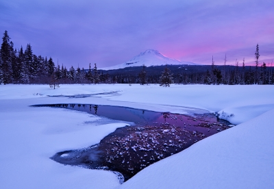 Mount Hood Morning