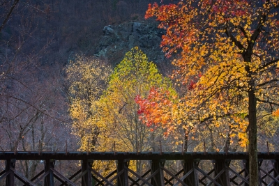 Train Trestle In Autumn Setting