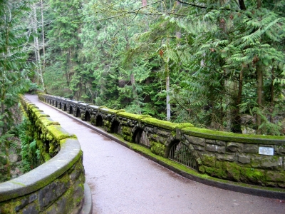 Bridge At Whatcom Falls