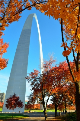 Fall And Arch