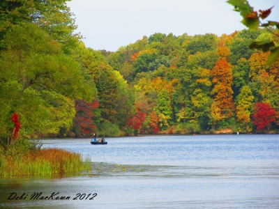 Fall On The Lake