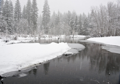 Snowy Morn On Merced River