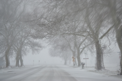 The Covered Road