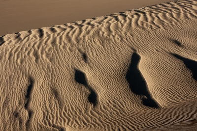 Great Rippled Sand Dunes
