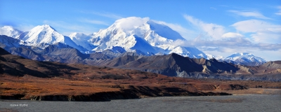 The Colors Of Fall Come To Denali National Park