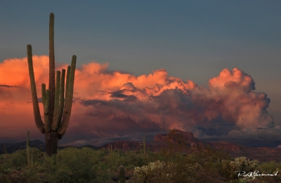 Twilight In The Superstitions