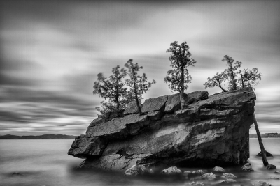 Rock And Trees On Lake Champlain