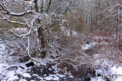 Creek In Snow Storm
