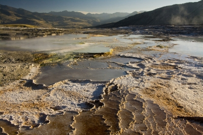 Mammoth Hot Springs Vista