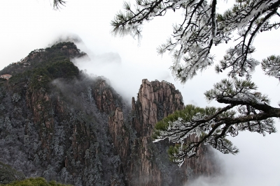 Icy Pines And Peaks Above Clouds
