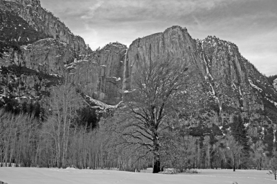 Yosemite Falls And Winter Meadow