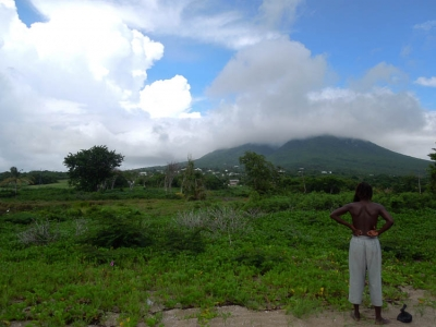 Pausing To Look At Nature On The Island Of Nevis