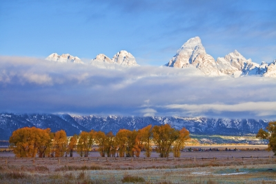 Grand Teton National Park, Fall Colors