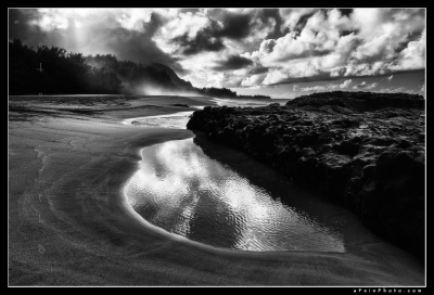 Wizard's Touch Bw