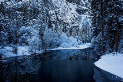 Cold Reflection