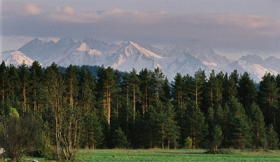 Tatra Mts In May