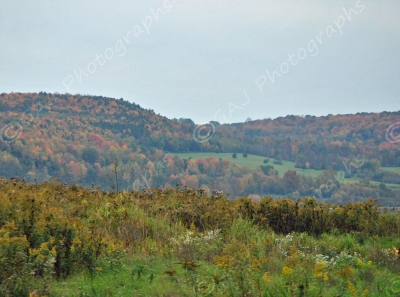 View From Cowanesque