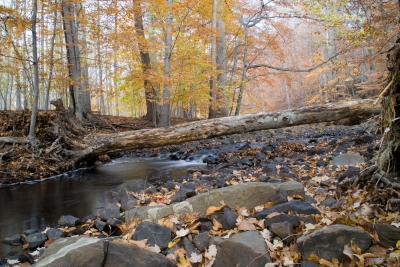 Autumn In The Reservation
