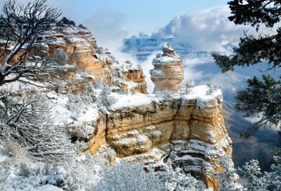 Morning Snow-grand Canyon
