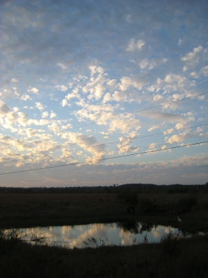 Pond Reflecting Clouds